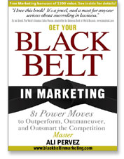 Get Your Black Belt In Marketing
